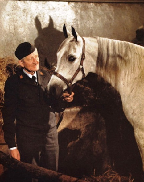 Direktor Andrzej Krzyształowicz (1915-1999) hat dem Janower Gestüt zu seine heutige Bedeutung verliehen.
