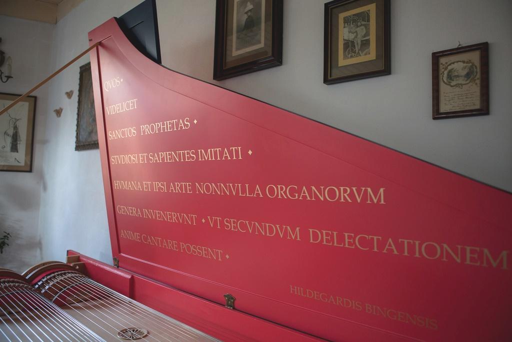 Viola Organista cytat H. v. Bingen fot